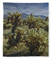 Teddy Bear Cholla Cactus In California 0274 Fleece Blanket