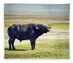 The African Buffalo. Ngorongoro In Tanzania. Fleece Blanket