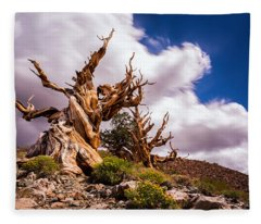The Ancient Ones Fleece Blanket