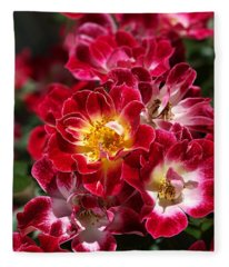 The Beauty Of Carpet Roses  Fleece Blanket
