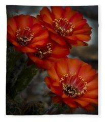The Beauty Of Red Fleece Blanket