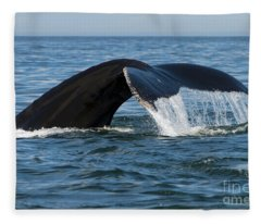 The Big Blue In The Bigger Blues... Fleece Blanket
