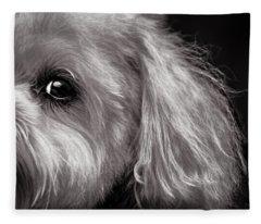 The Dog Next Door Fleece Blanket
