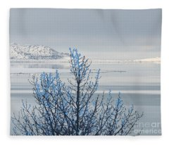 The Freeze At Mono Lake Fleece Blanket