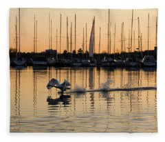 The Golden Takeoff - Swan Sunset And Yachts At A Marina In Toronto Canada Fleece Blanket