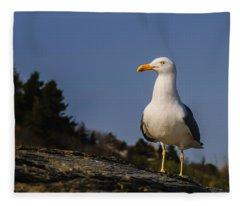 The Observer Fleece Blanket