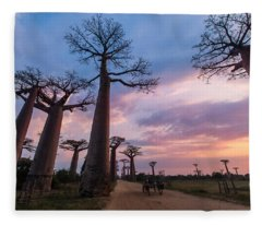 The Road To Morondava Fleece Blanket