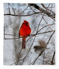Blue Eyes In The Snow Cardinal  Fleece Blanket