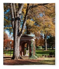 The Well - Davidson College Fleece Blanket