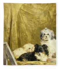 Three Dogs Fleece Blanket