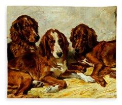 Three Irish Red Setters Fleece Blanket