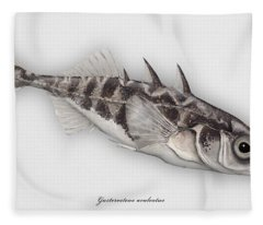 Three-spined Stickleback Gasterosteus Aculeatus - Stichling - L'epinoche - Espinoso - Kolmipiikki Fleece Blanket