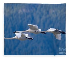 Three Swans Flying Fleece Blanket