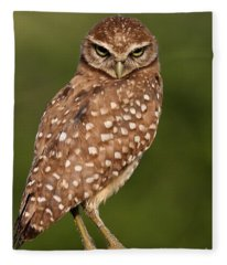 Tiny Burrowing Owl Fleece Blanket