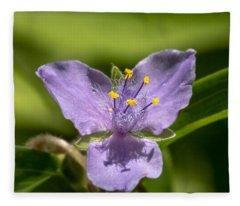 Tradescantia Virginiana Fleece Blanket