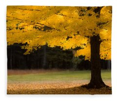 Tree Canopy Glowing In The Morning Sun Fleece Blanket