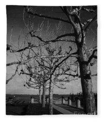 Tree In A Row  Fleece Blanket