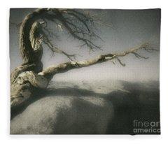Tree Of Ages Fleece Blanket