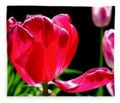 Tulip Extended Fleece Blanket