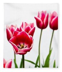 Tulips Say Hello Fleece Blanket