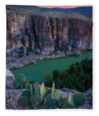 Twilight Cactus Fleece Blanket