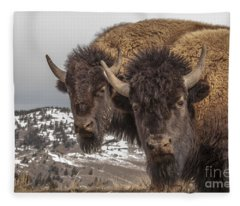 Two Bison Fleece Blanket