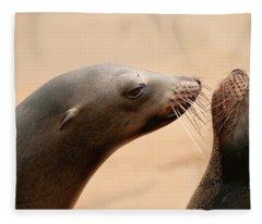 Two Sea Lions Being Playful Fleece Blanket