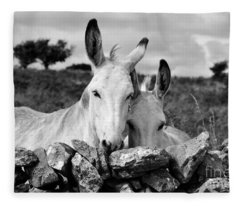 Two White Irish Donkeys Fleece Blanket