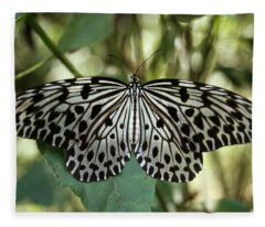 Uglassy Tiger Butterfly Fleece Blanket