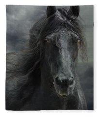 Veni Vidi Vici  Fleece Blanket