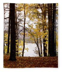 View Of  Lake Mcdonald Fleece Blanket