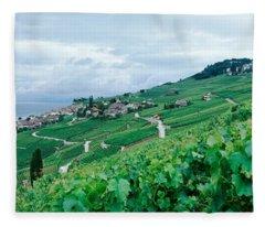 Vineyard On A Hillside In Front Fleece Blanket