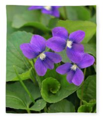 Violet Trio Fleece Blanket