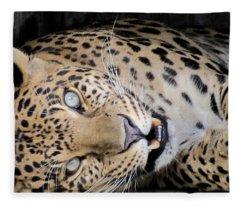 Voodoo The Leopard Fleece Blanket