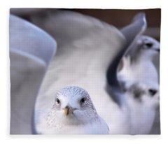 Waiting In The Wings Fleece Blanket
