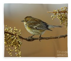 Yellow Rumped Warbler Fleece Blanket