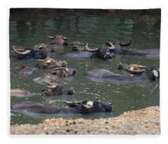 Water Buffalo Fleece Blanket