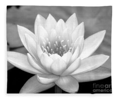 Water Lily In Black And White Fleece Blanket