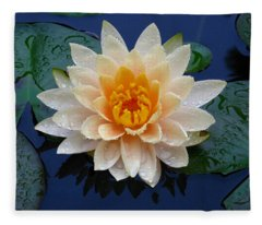 Waterlily After A Shower Fleece Blanket