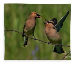 Waxwing Love.. Fleece Blanket
