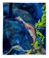 Weedy Seadragon Fleece Blanket