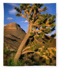 West Grand Canyon Fleece Blanket