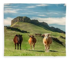 Western Longhorns Fleece Blanket