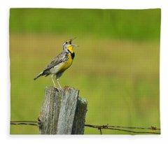 Western Meadowlark Fleece Blanket