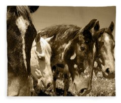 Whimsical Stallions Fleece Blanket