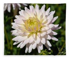 White Dahlia Flower Fleece Blanket