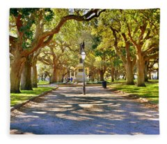 White Point Gardens At Battery Park Charleston Sc Hdr Fleece Blanket