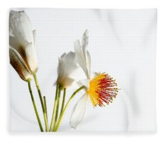 White Sparmannia Africana Plant. Fleece Blanket