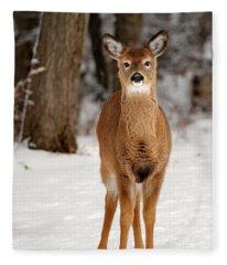 Whitetail In Snow Fleece Blanket