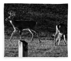 White Tailed Deer Fleece Blanket